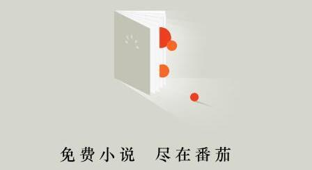 番茄免费小说辅助.jpg